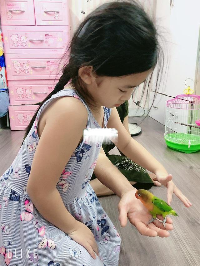 Món quà đặc biệt mà Lavie nhận được trong sinh nhật 7 tuổi là một chú vẹt biết nói.