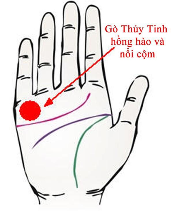 Nếu lòng bàn tay thấy 4 điều này: Chủ nhân chắc chắn giàu có, phú quý - ảnh 1