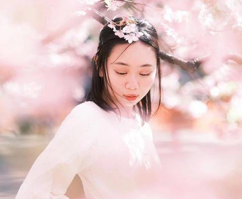 Đây chính là loại dầu giúp phụ nữ Nhật có được da dẻ mịn màng, tóc tai bồng  bềnh