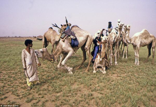 bo-lac-tuareg-03