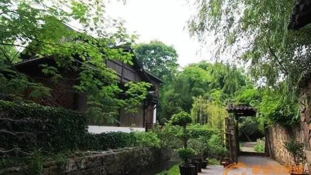 Không gian được bao phủ rất nhiều cây xanh tạo vẻ đẹp cổ kính