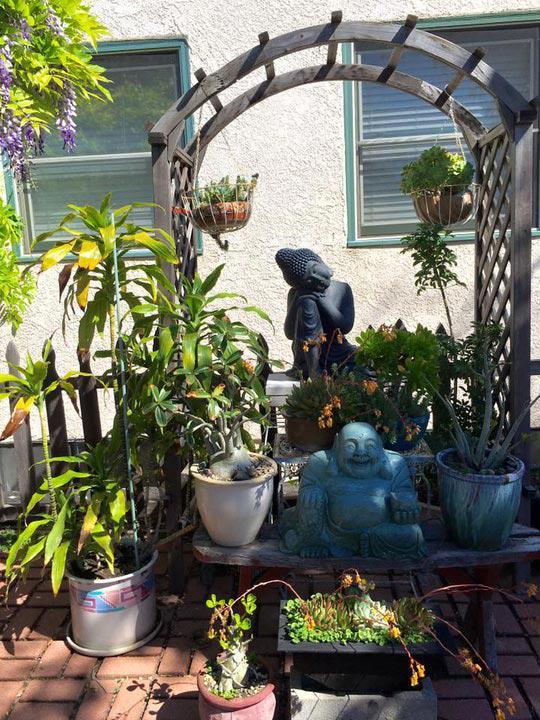 Nữ diễn viên hài cũng trưng bày nhiều tượng Phật được chạm khắc tinh xảo ở cả ngoài vườn và trong nhà.
