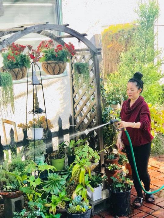Khi rảnh rỗi nghệ sĩ Thúy Nga thường tự tay chăm sóc vườn hoa yêu quý của mình