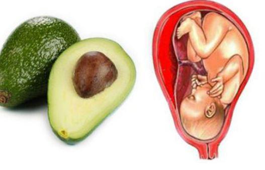 Mẹ bầu thường xuyên ăn 10 loại thực phẩm này, con sinh ra thông minh vượt trội hơn các bạn