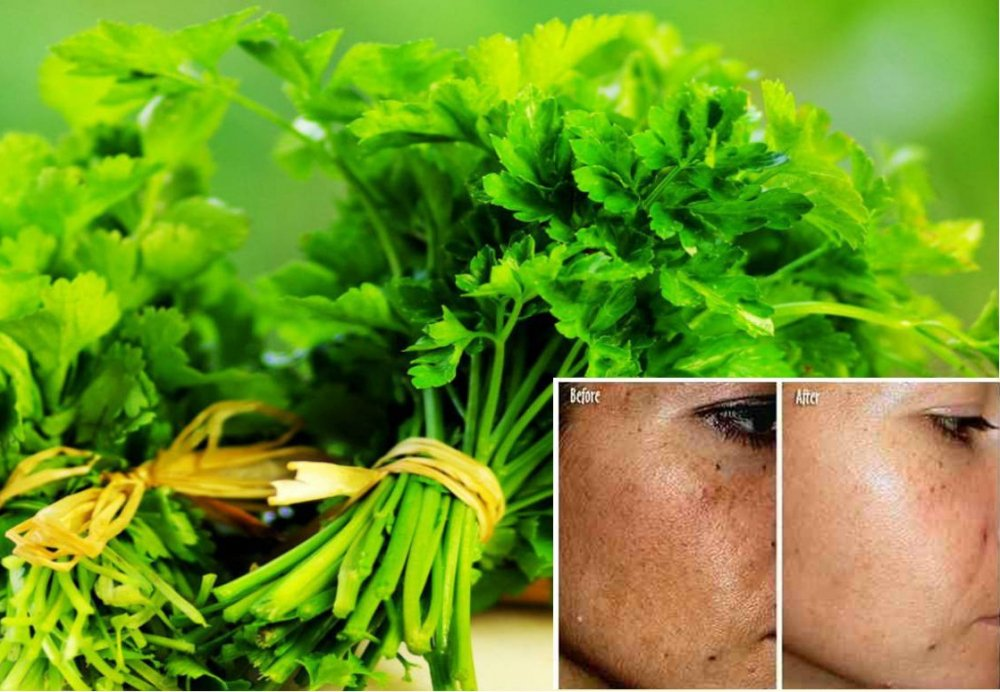 Herb-That-Kills-Lung-Cancer-Cells