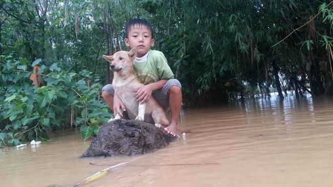 Nhói lòng: Bơi ra dòng nước lũ cứu chú chó nhỏ, cậu bé 6 tuổi bật khóc vì không thể vào bờ
