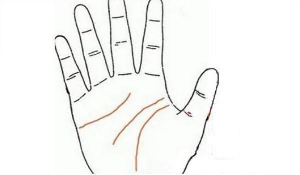 Nếu lòng bàn tay xuất hiện 3 dấu hiệu này thì bạn sẽ kết hôn muộn nhưng tình cảm rất bền chặt, khó rời