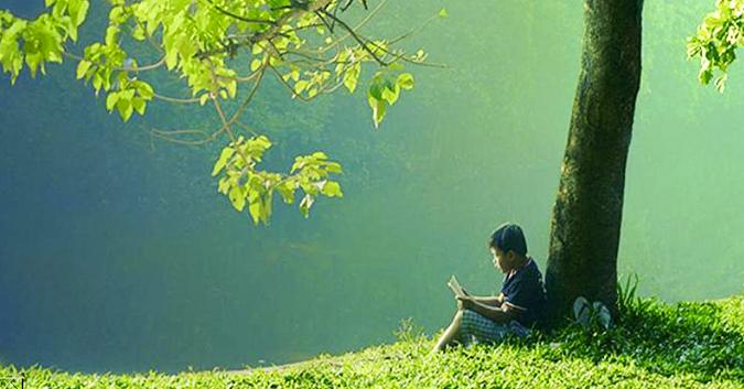 Chuyện cây mía và người ngốc: Hãy đọc và ngẫm để một đời thanh thản!