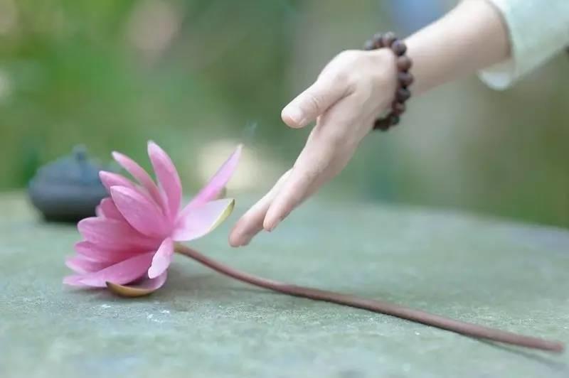Tình cảm giữa người với người, cứ nhạt một chút sẽ tốt, thân thiết quá dễ nảy sinh oán nghiệp