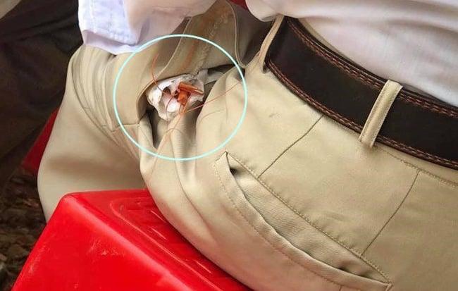 Thi nhau cười nhạo khi thấy người đàn ông 'giấu' tôm trong túi quần, biết sự thật ai cũng bật khóc
