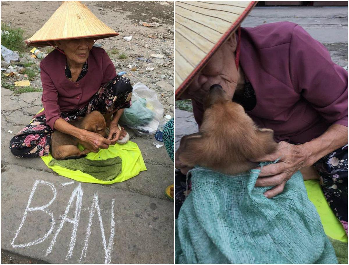 Cụ già hôn từ biệt chú chó nhỏ trên vỉa hè cùng câu chuyện đau lòng khiến ai cũng phải rơi nước mắt