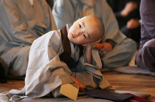 Phật dạy: Tuỳ ngộ mà an, tuỳ duyên mà sống