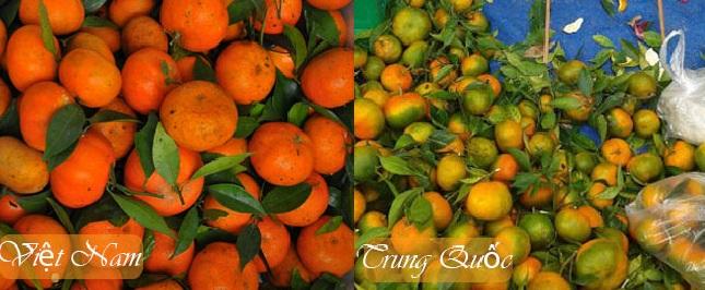 Mách bạn cách phân biệt cam Việt Nam và cam Trung Quốc