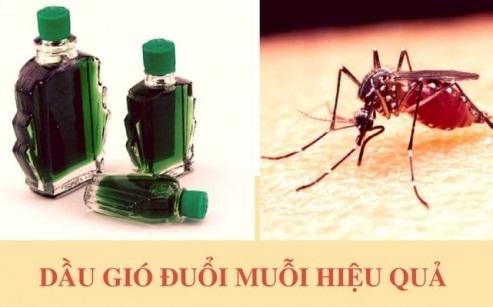 dau-gio1