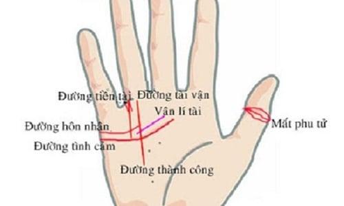 co-tuong-tay-nay-at-ca-doi phunutoday