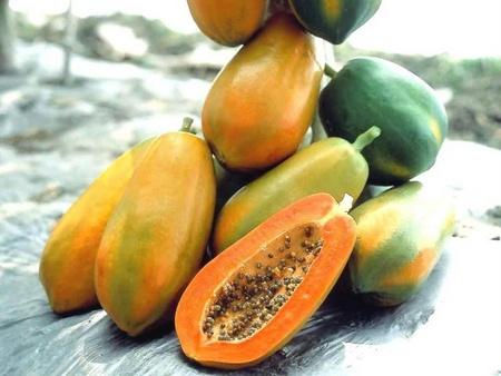 Mách chị em 9 loại trái cây giúp tăng kích cỡ vòng một