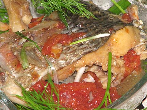 Image result for cá CHÉP sốt cà chua