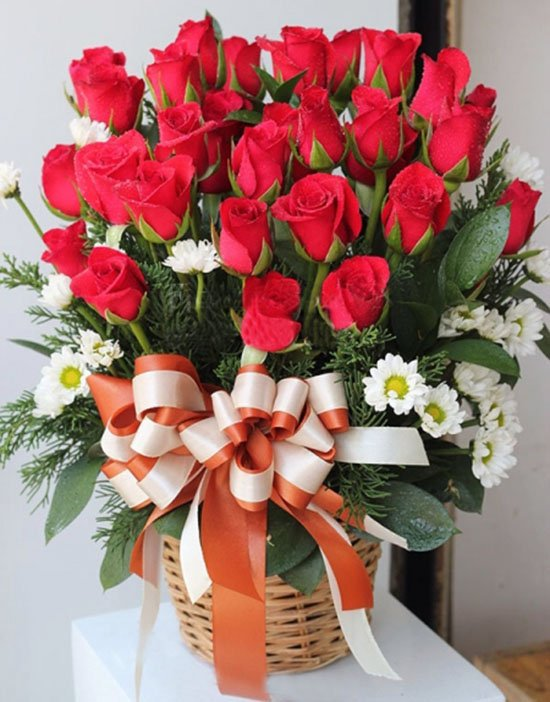 Những loài hoa nên tặng thầy cô giáo trong ngày 20/11 | Đồng phục teen