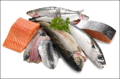 Kết quả hình ảnh cho hình ảnh các loại cá chứa kẽm