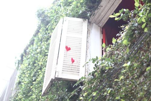 Những quán cafe bói bài Tarot nổi tiếng ở Hà thành. Ảnh 4