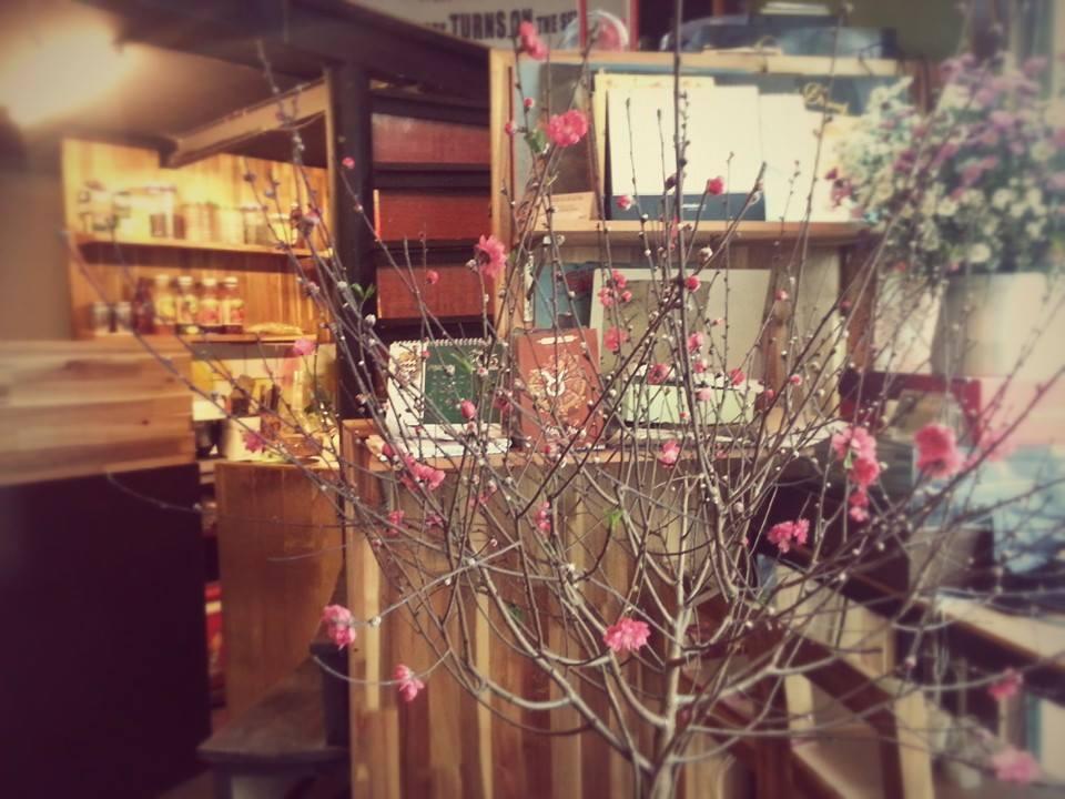 Những quán cafe bói bài Tarot nổi tiếng ở Hà thành. Ảnh 7
