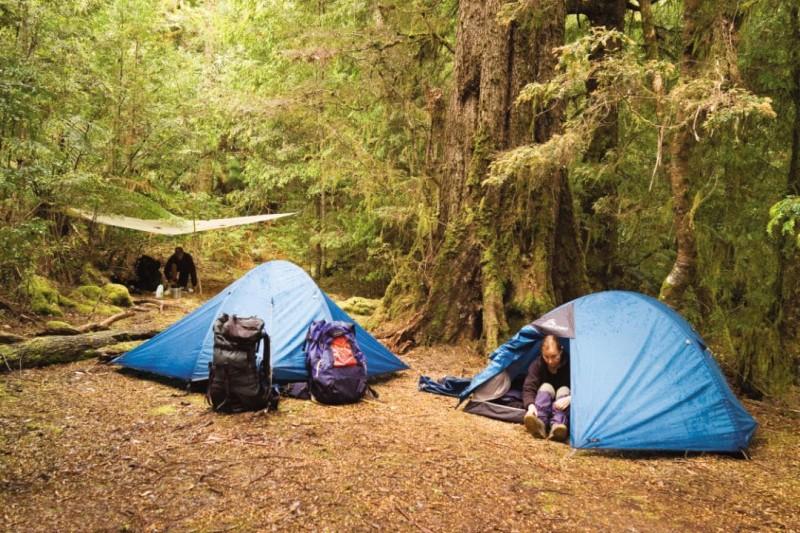 Kết quả hình ảnh cho cắm trại