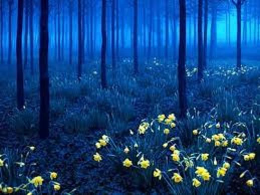 Những thắng cảnh thiên nhiên khiến bạn phải thốt lên vì kinh ngạc